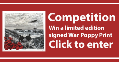 War Poppy Competition