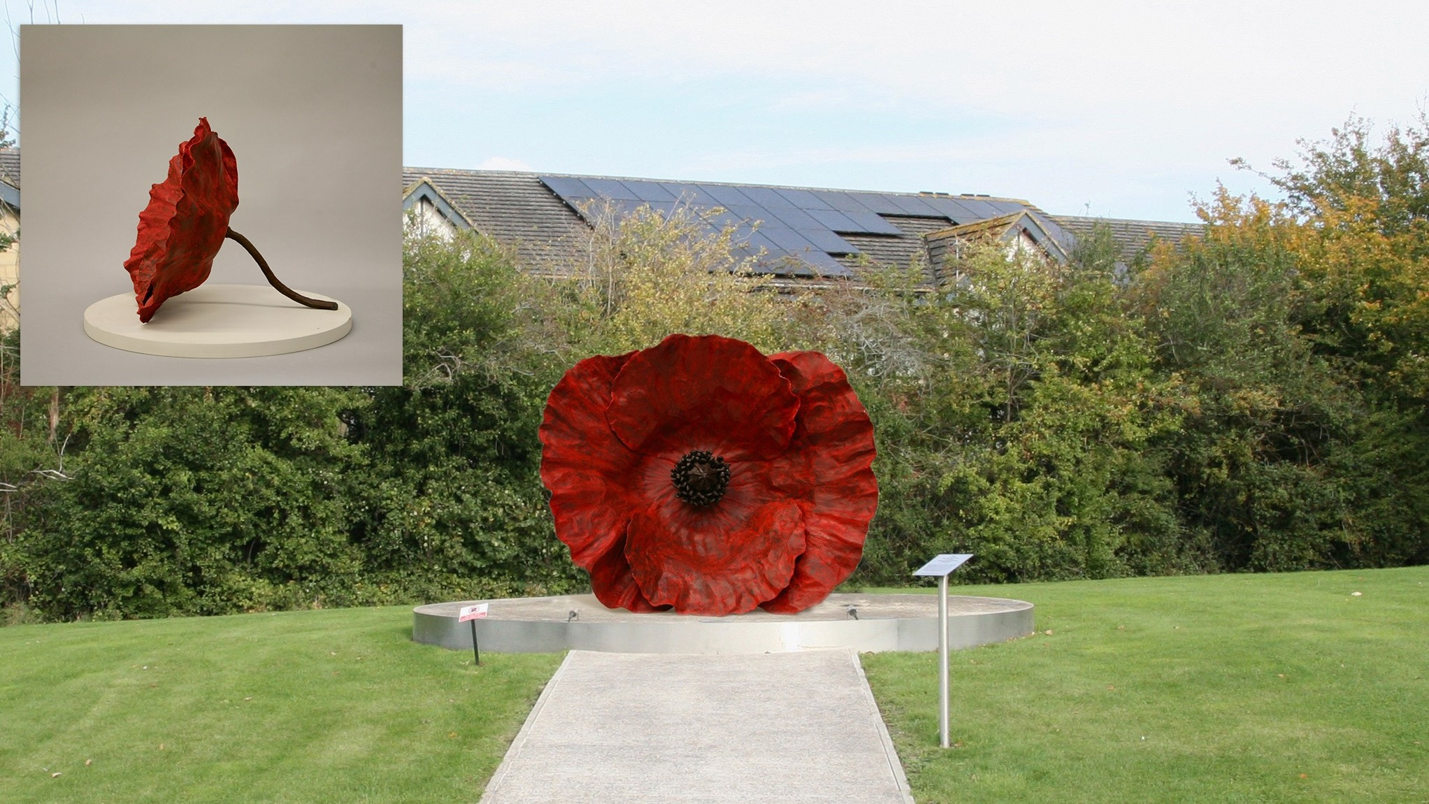 Just £1 from you could see new Forever Poppy memorial bloom