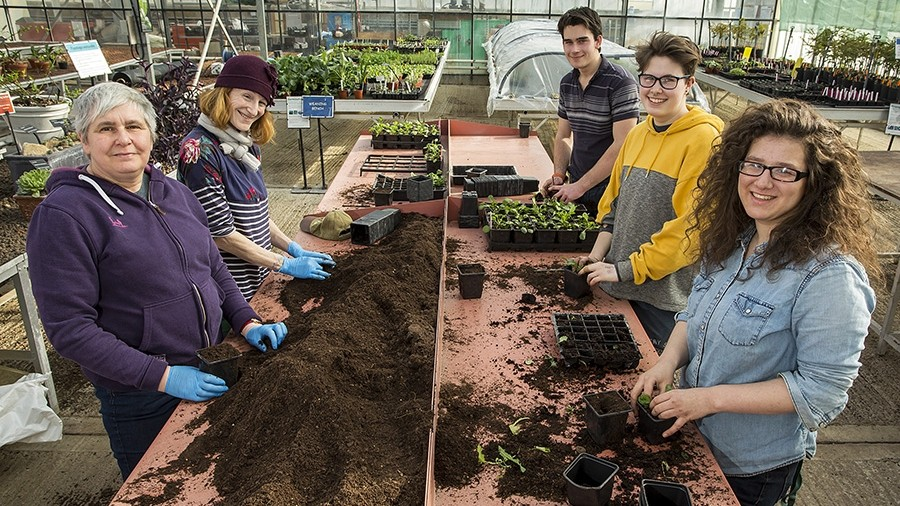 Students and Veterans work together to create RHS Chelsea Flower Show Garden