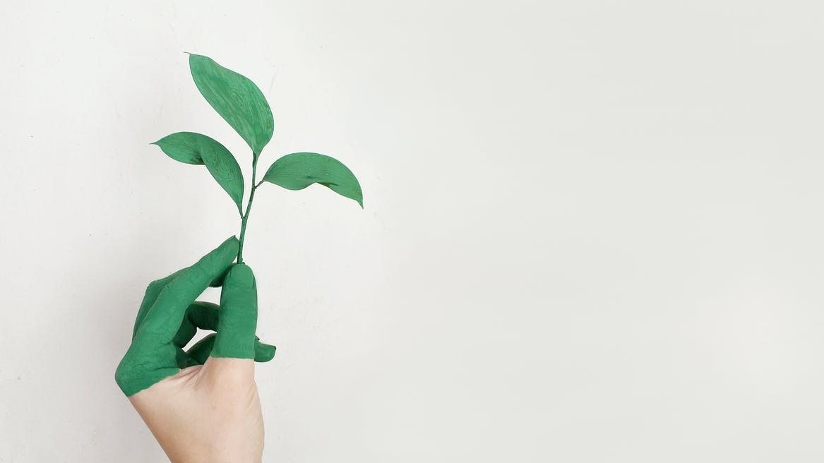 Help grow a sustainable future